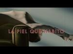 piel-que-habito-movie-title-small
